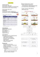 Endocardites - Slides em Texto.docx