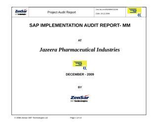 MMWM-Audit Report.doc