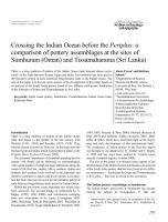 Pavan& Schenk2012Crossing Indian Ocean before the Periplus.pdf