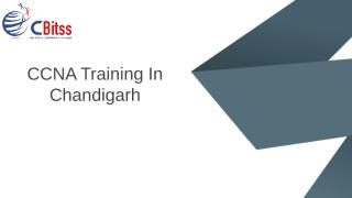 CCNA Training In Cahndigarh.pptx