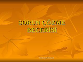 Sorun_cozme_becerisi.ppt